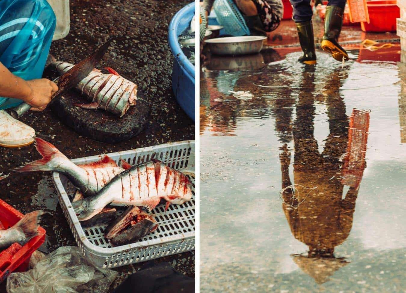 Hoi An Fish Market - Hoi An's markets