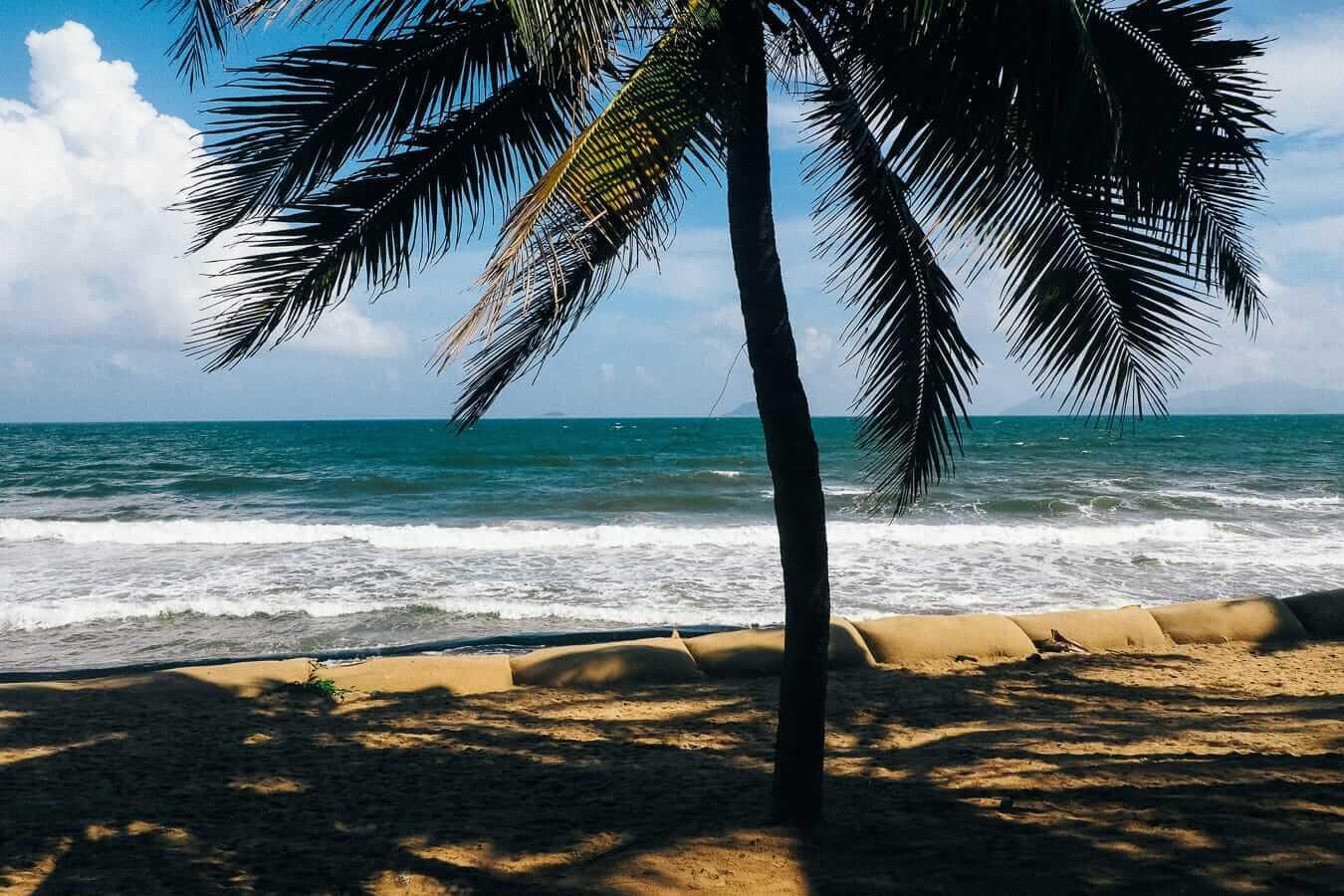 Palm trees shadows: Hoi An's beaches