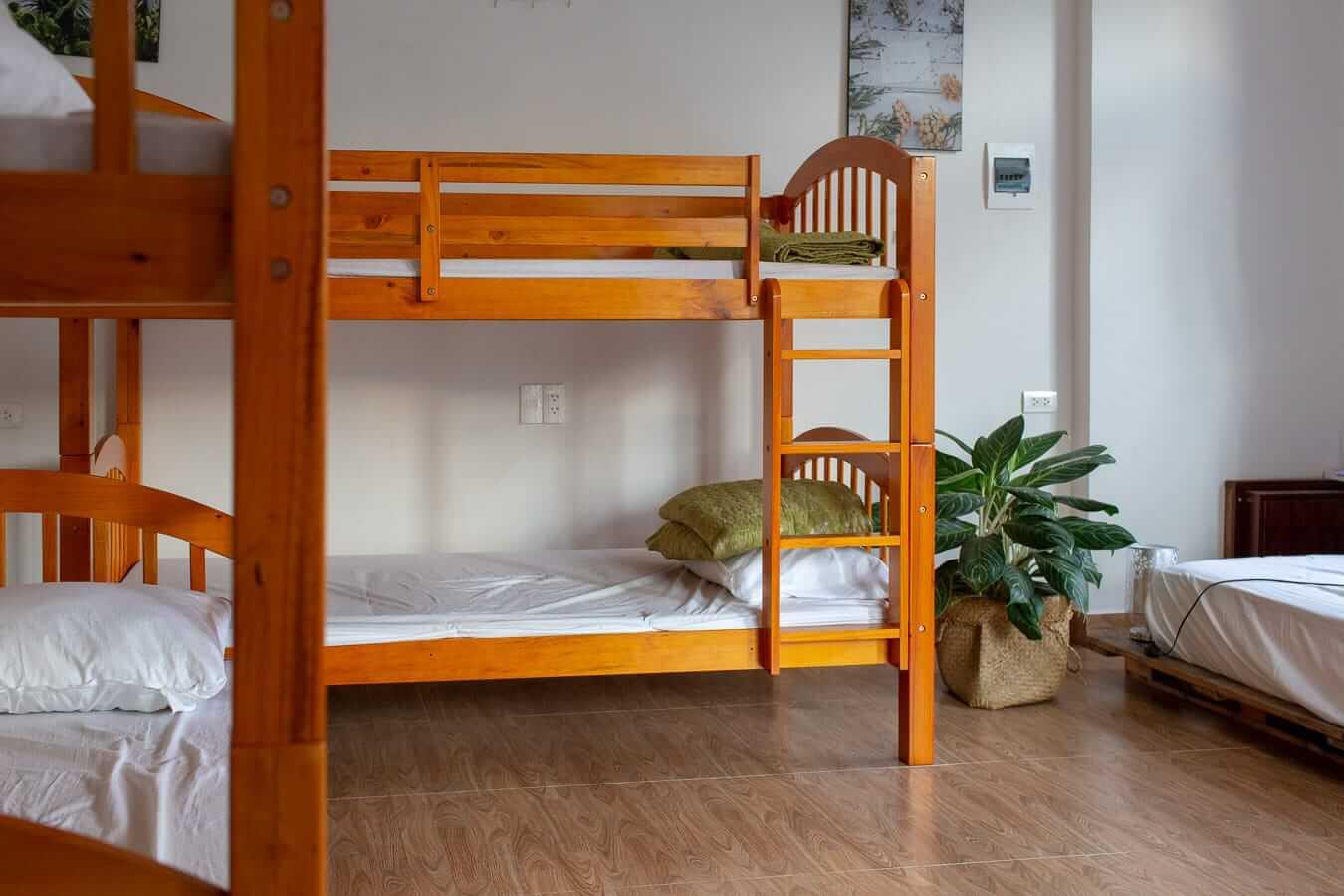 Bisou De La Riviere Homestay: Hoi An Budget Accommodation