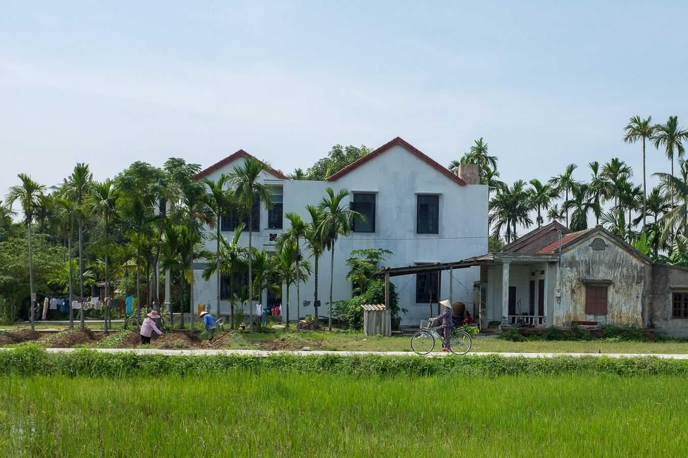 Rice paddies: Hoi An cycling
