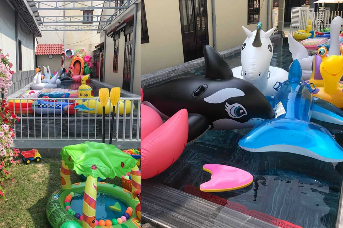 Baby Shark Club's pool: Pools in Hoi An