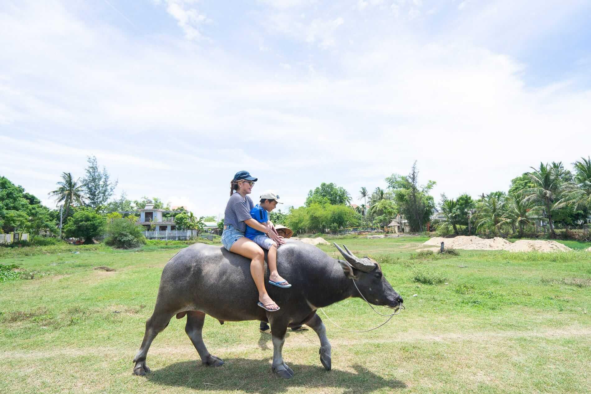 Buffalo ride at Tra Que Village