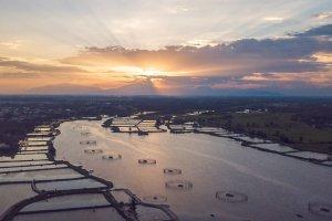 Hoi An River Sunset