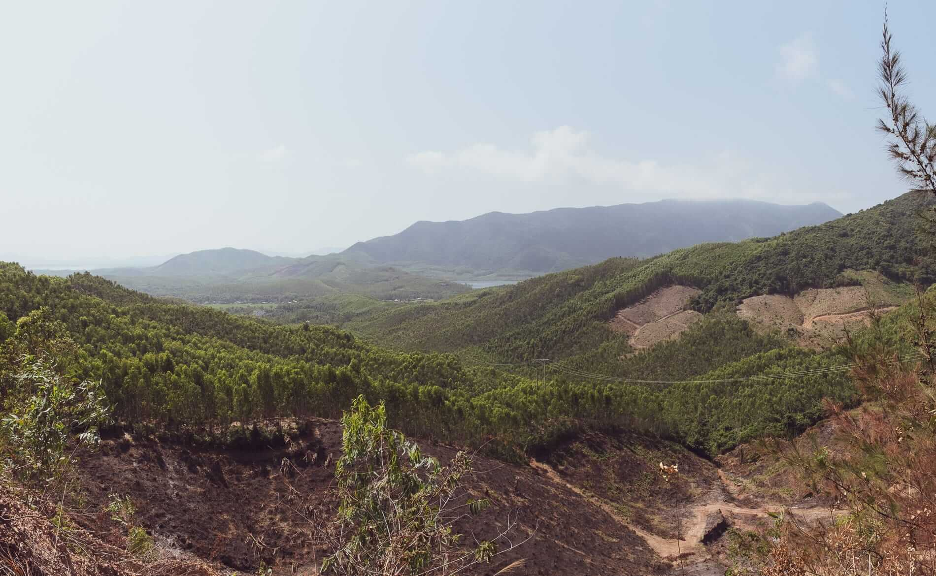 View from road DT639 - Hoi An to Quy Nhon