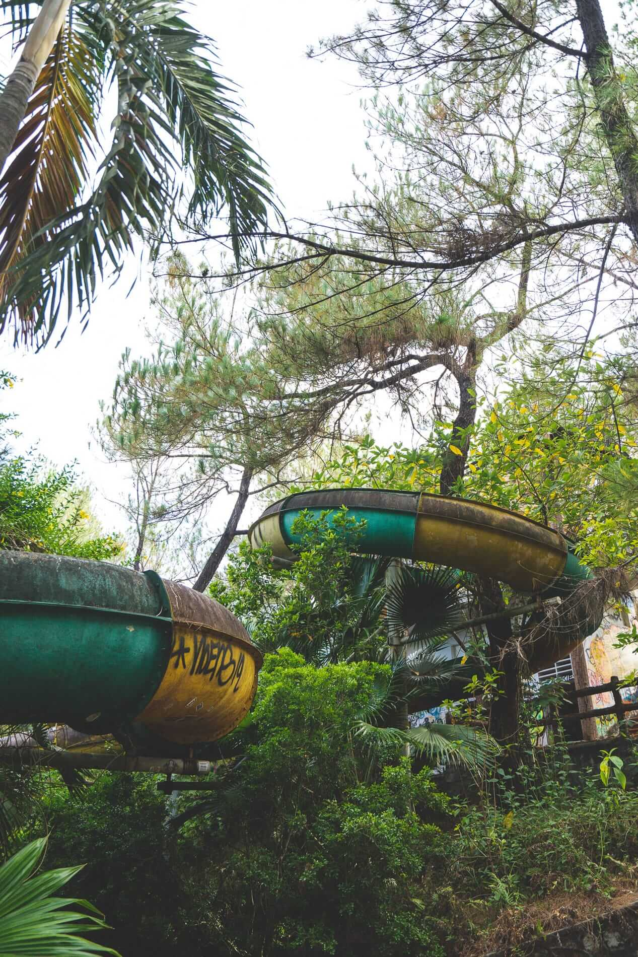 Decaying slide covered in trees - Hues Abandoned Water Park