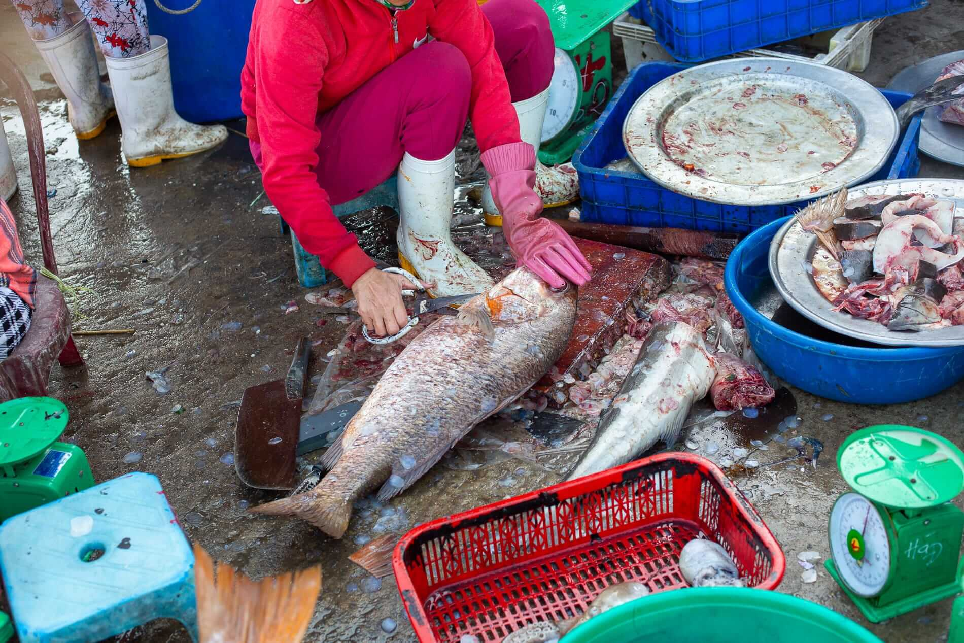 Vendor cleaning a fish