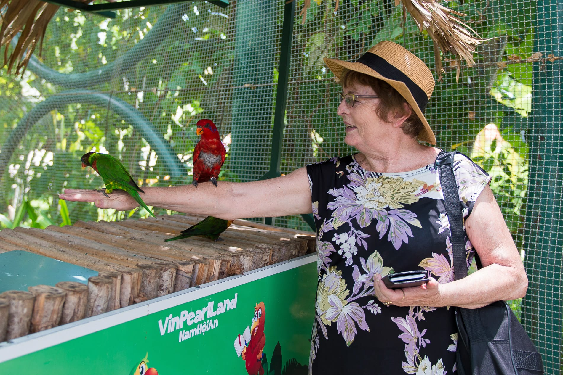 A tourist feeding the birds