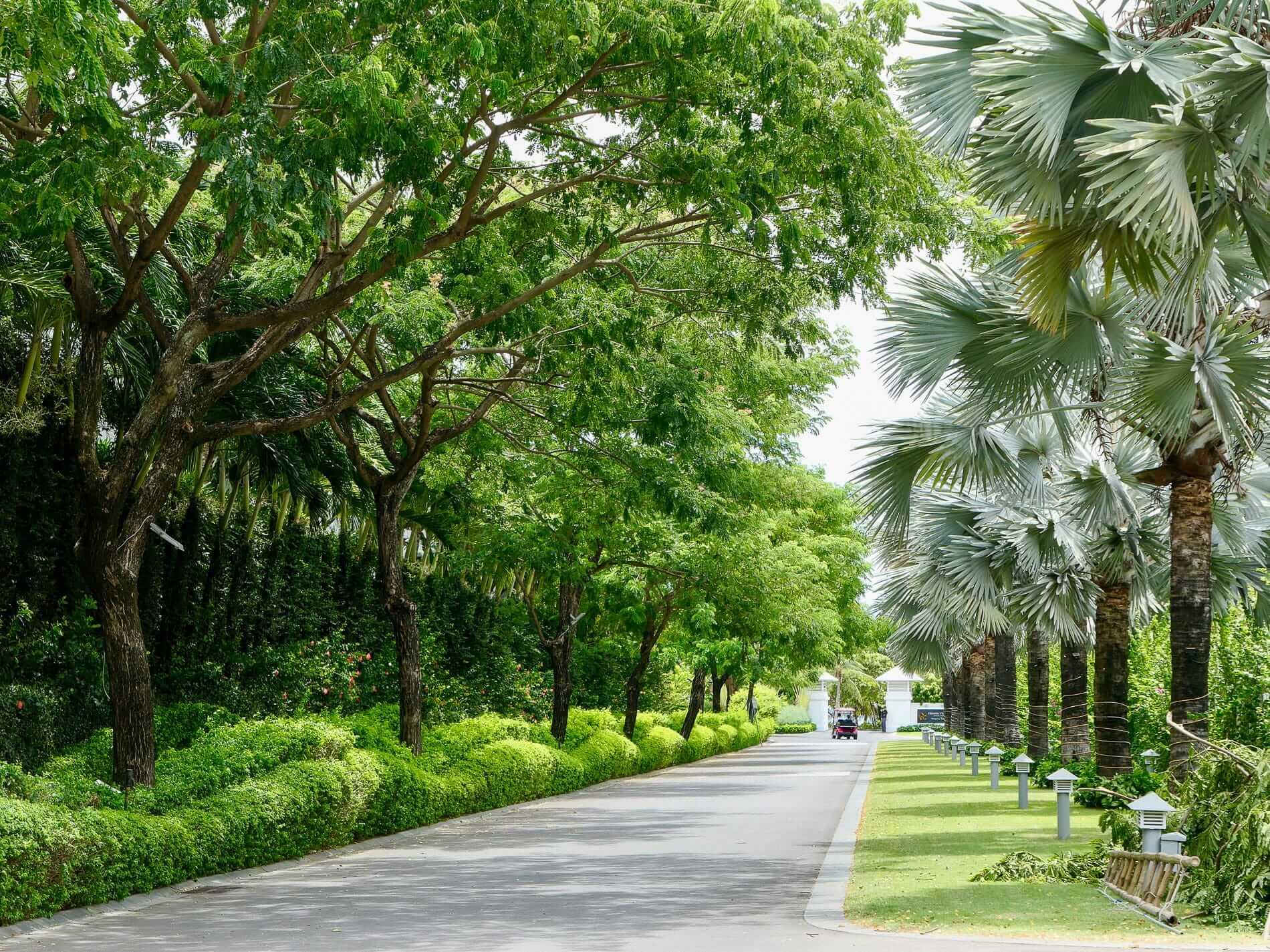 Tree lined paths at Premier Village Da Nang Resort